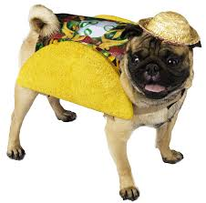 pug halloween costume for baby amazon com taco pet food dog costume x small as shown taco