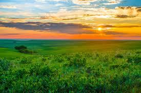 Kansas national parks images Celebrate kansas day in your national parks national park foundation jpg