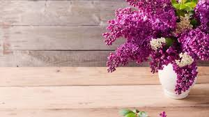 Lilac Flower by Lilacs Tag Wallpapers Page 2 Still Basket Life Lilacs Flowers