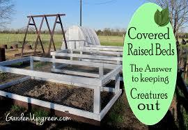 the backyard farming connection the backyard farming connection