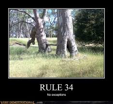 Rule 34 Memes - very demotivational rule 34 very demotivational posters