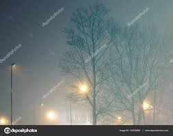 bare trees and lights stock photo chevnenko 143726983