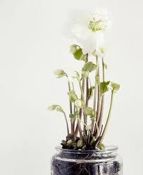 Home Decor Flower Arrangements 47 Flower Arrangements For Home Décor Digsdigs