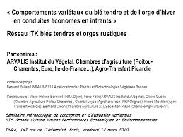 chambre d agriculture 77 réseau itk blés tendres et orges rustiques ppt télécharger