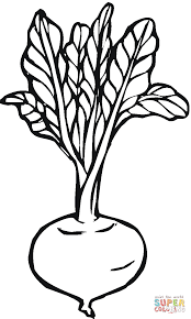 beetroot 3 coloring page free printable coloring pages