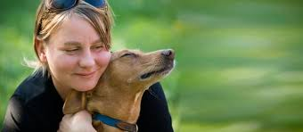 How To Interview A Pet Sitter Care