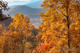 Autumn Colors Fall Foliage 2017 Forecast And Guide Blue Ridge Mountain Life