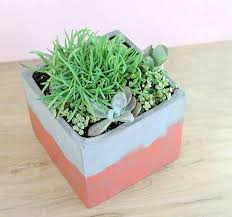 diy stained concrete planter persia lou