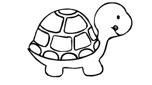animal coloring pages turtle coloring pages color plate coloring