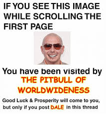 Pitbull Meme Dale - if you see this image while scrolling the first page you have been