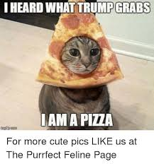 Good Vibes Meme - 20 cute memes that bring good vibes sayingimages com