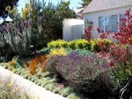 landscaping ideas for small yards landscape design case study