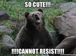 So Cute Meme - so cute cannot resist sarcastic bear make a meme