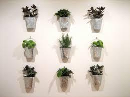fresh unique indoor herb gardens 8390