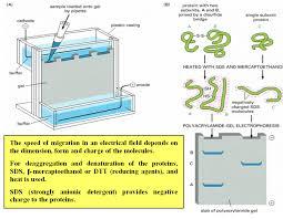 sim unsur dan rumus kimia formulae math physics chem