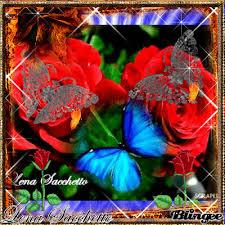 Roses And Butterflies - roses and butterflies by lena sacchetto picture 117156343