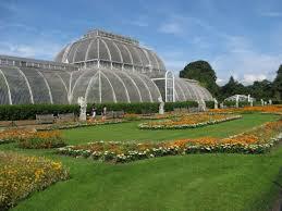 Botanic Gardens Uk Royal Botanic Gardens Kew Uk I M In The Conservatory