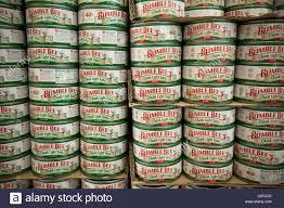 bumble bee chunk light tuna bumble bee chunk light tuna in a supermarket in the bronx in new