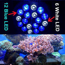 best lighting for corals rayway e27 pa38 12blue 6white led aquarium light bulb saltwater