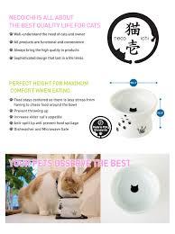 amazon com necoichi raised cat food bowl cat pet supplies