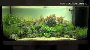 Aquascape Aquarium Designs Aquascaping Aquarium Ideas From Zoobotanica 2013 Pt 1 Youtube