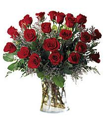 a dozen roses two dozen roses