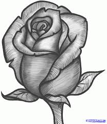 rose flower pencil drawing images angel drawing of pencil sketches