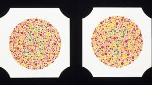 Green Red Color Blind Have Red Green Color Blindness Tell U0027nightline U0027 U2013 Colorblind