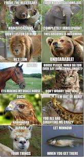 Best Animal Memes - what are some of your best animal memes quora