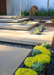 modern residential landscape architecture blue fescue or blue