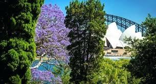 Botanic Garden Sydney Sydney Botanical Gardens Sydney Botanic Gardens Restaurant Wedding