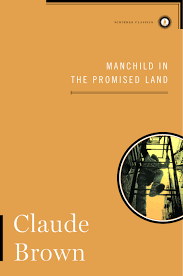 manchild in the promised land book by claude brown nathan