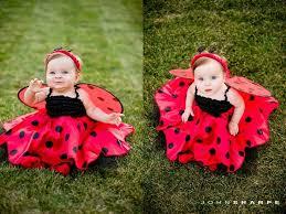 Infant Halloween Costume Ideas 25 Baby Ladybug Costume Ideas Ladybug