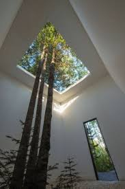 best 25 atrium garden ideas on pinterest atrium interior