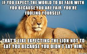 Lion Meme - my humble attempt at a hard truth lion meme imgur
