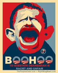 boo hoo boo hoo poster stand up for america