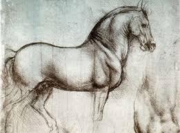 Leonardo Da Vinci Human Anatomy Drawings Leonardo Da Vinci U0027s Representation Of Animals In His Works