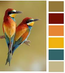 Autumn Color Schemes Autumn Colors Pin It By Carden Color Palettes Shades U0026 Tones