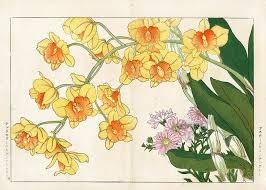 Japanese Flower Artwork - 111 best japanese flower art images on pinterest japanese