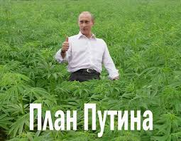 В России задержанных с наркотиками будут отправлять на принудительное лечение - Цензор.НЕТ 1120
