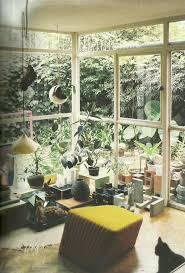 1111 best green room images on pinterest plants indoor plants