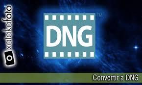 convertir varias imagenes nef a jpg tres buenas razones para convertir los archivos raw a dng