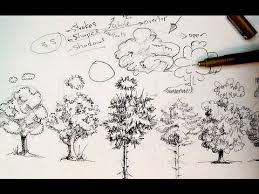 pen u0026 ink drawing tutorials how to draw trees youtube
