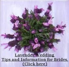 wedding flowers lavender wedding lavender by lavender fanatic lavender wedding flowers