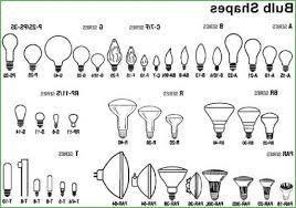 flood light bulb types lighting halogen flood light bulb sizes halogen flood light bulb