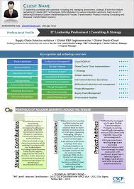 15 creative infographic resume templates visual template doc
