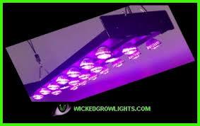 Grow Room Lights Led Grow Lights Full Spectrum Cob