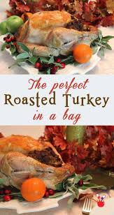 best 25 turkey bag recipes ideas on thanksgiving
