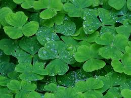 10 free iphone apps for a happy st patrick u0027s day