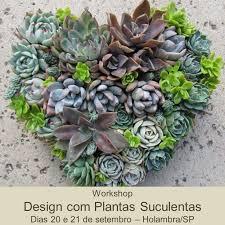 Succulent And Cacti Pictures Gallery Garden Design 8 Best Workshop Design Com Plantas Suculentas Images On Pinterest